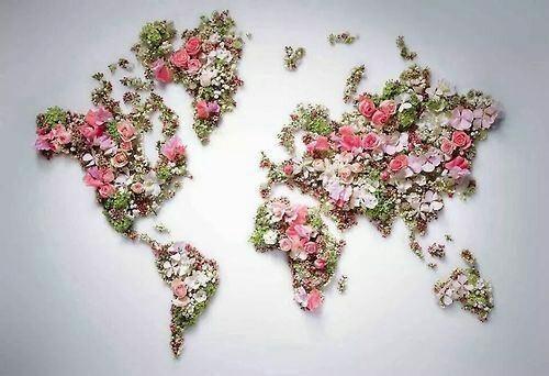 paz mundial Yo amo meditar