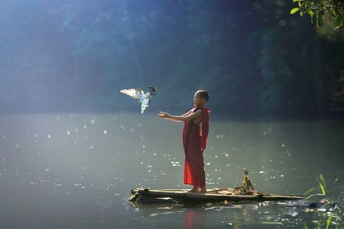 paz interior Yo amo meditar