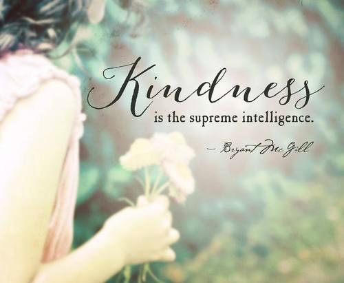 bondad es la inteligencia suprema